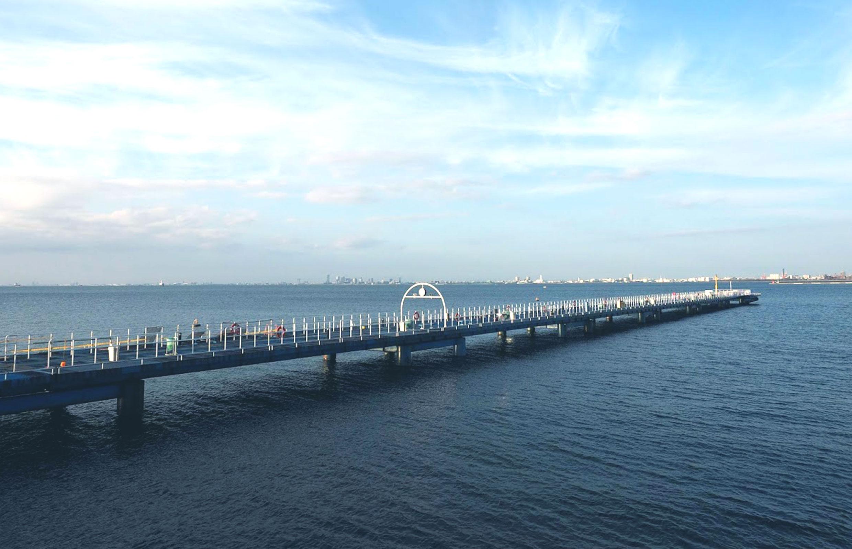 市原 海 の 公園 釣り